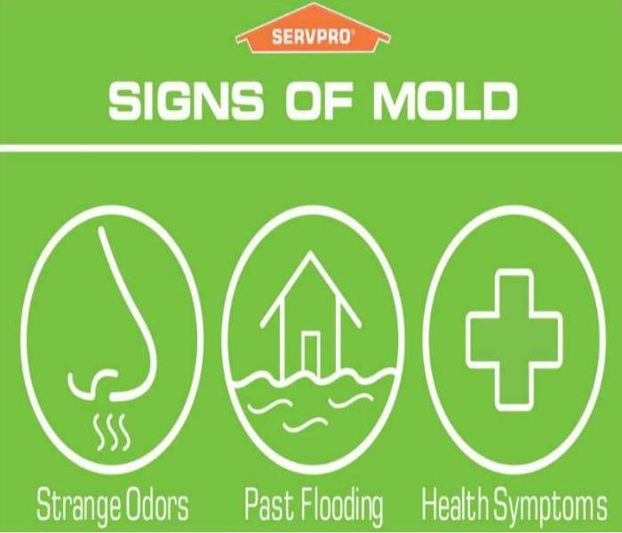 Worried About Mold? We Can Help!