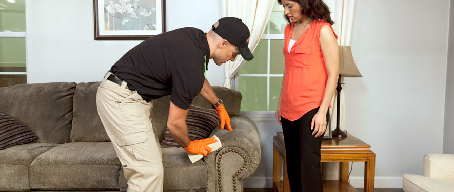 Indianapolis, IN carpet upholstery cleaning